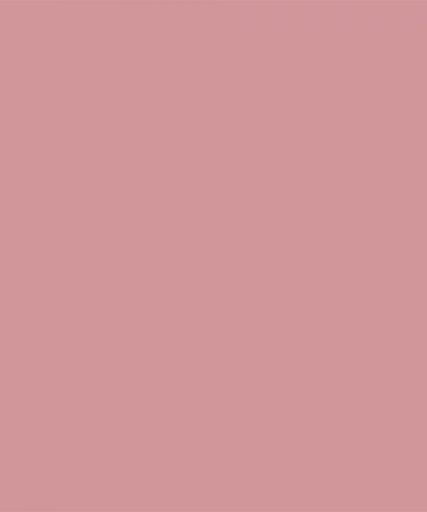 Little Hedonist Ribbed Kneesocks Blush